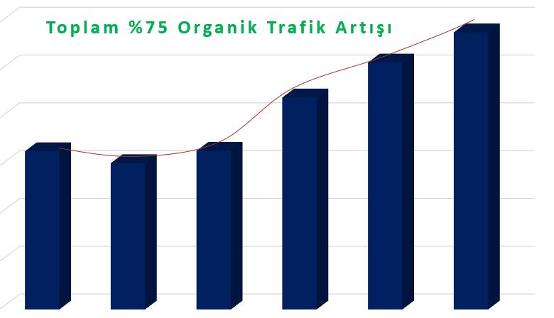 Beta Kimya'nın Organik Trafiğini %405 Artırdık