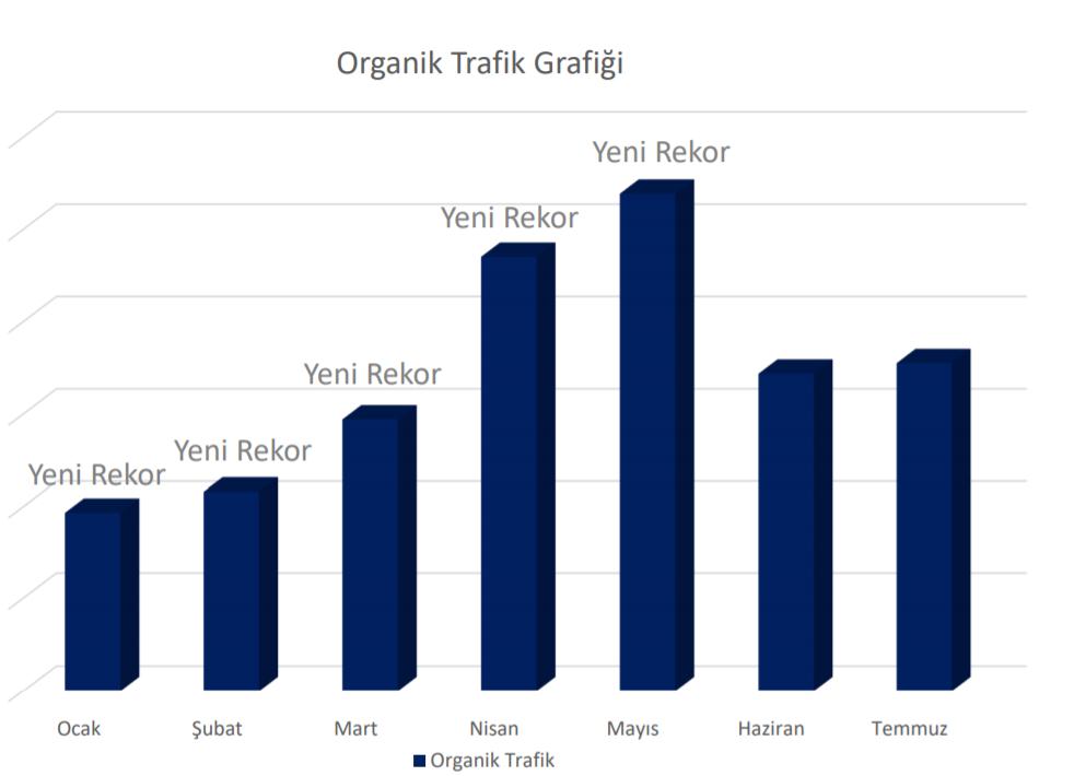 Alnus Yatırım'ın Organik Trafiğini %773 Artırdık!