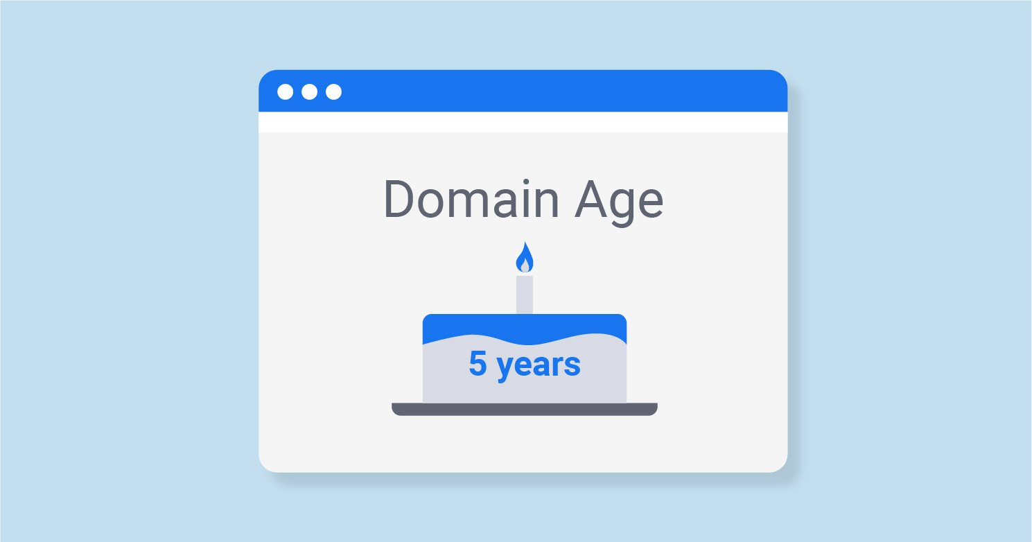 domain-yasi-ve-seo